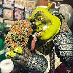 blog-insets-=ShrekSmokin